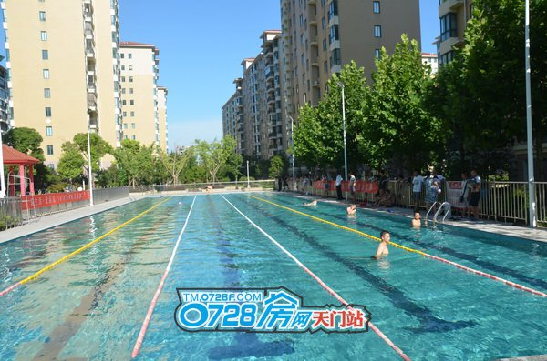 清澈见底的水波光粼粼选手们正在水中热身