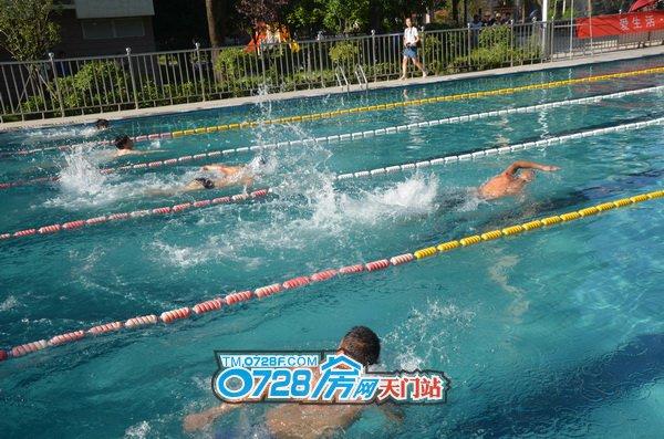 4号泳道的选手迅速与其他人拉开了距离