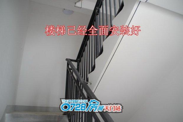 楼梯已经全面安装好