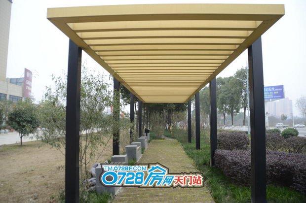 大气长廊,撑起一片绿荫,风虽冷,心却温暖