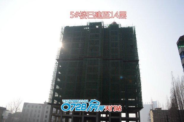 5#楼已建至14层