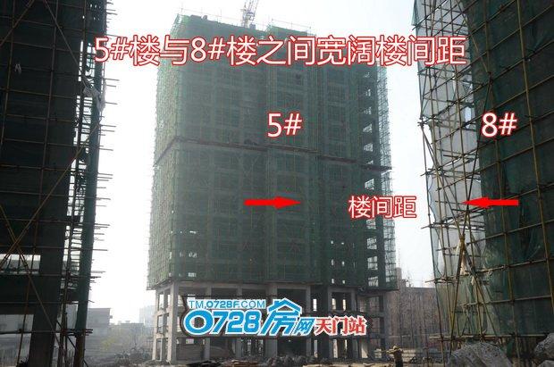 5#楼与8#楼之间宽阔楼间距