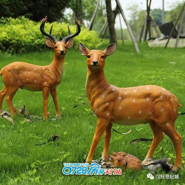 汉旺世纪城:梦幻动物园空降天门,萌动全城!