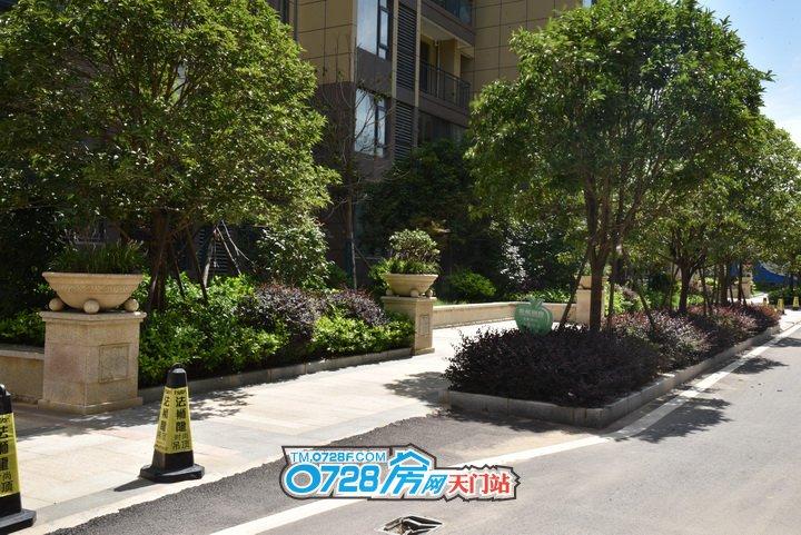 入户大门前的小花坛,树长得茂盛仿佛外面炎热的天气丝毫不能影响到它