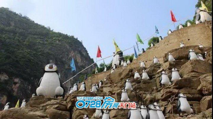 企鹅展示区