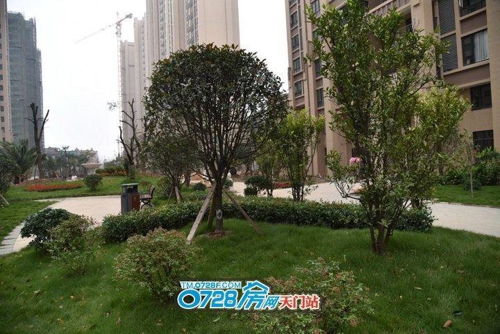如此环境清幽,位置绝佳的鑫龙•中央公园,你还不来搞一套再说!!