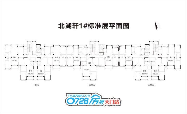 北湖轩1#标准平面图