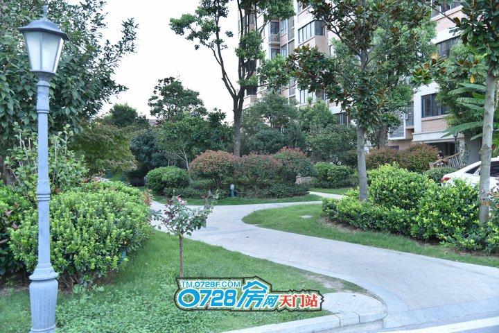 华茂阳光城宽阔的楼间距,种植了种类繁多的绿化植被