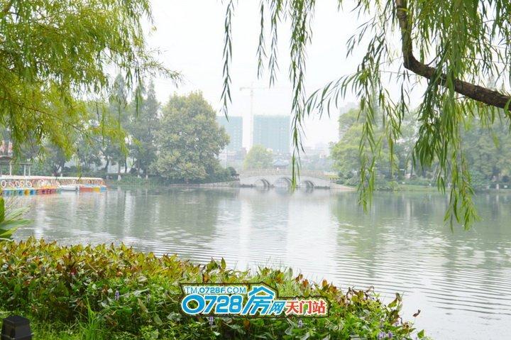 东湖旁,俯揽公园无限景致